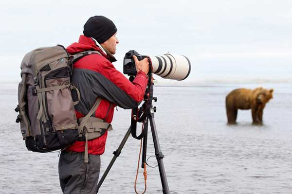 Photographer taking photo of a bear