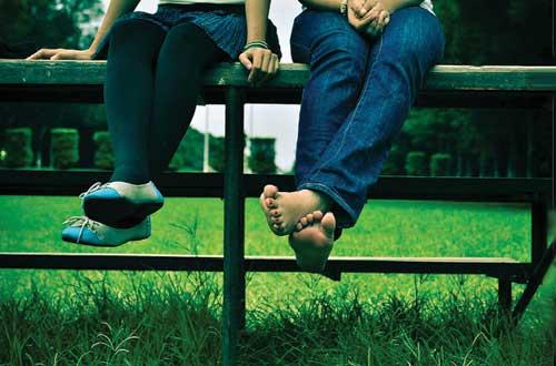 Sitting together on fence