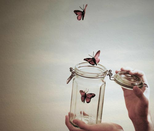 Butterflies flying out of a jar