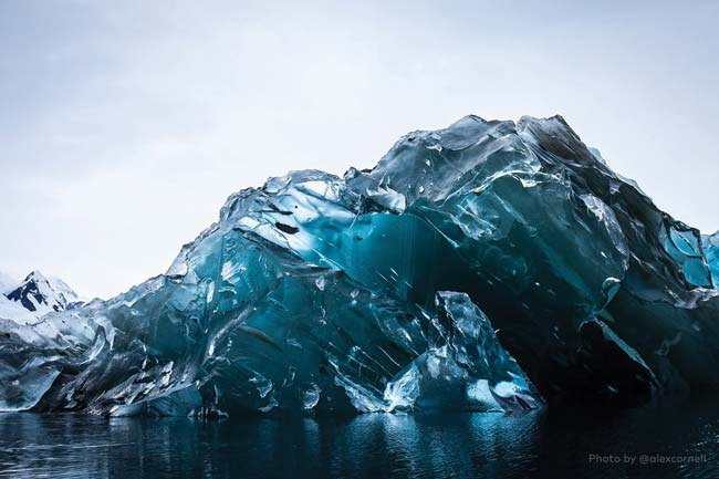 Flipped iceberg in Cierva Cove, Antarctica