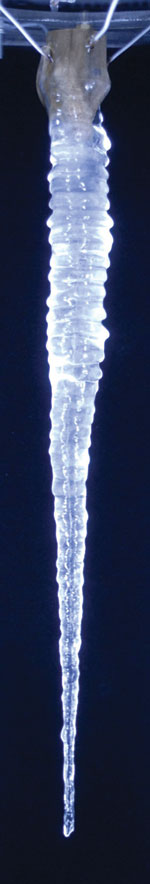 Icicle grown in lab conditions