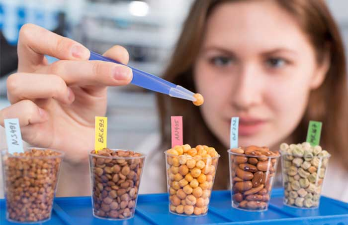 Female food scientist conducting tests