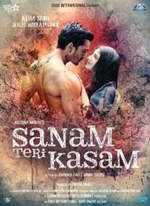Sanam Teri Kasam DVD cover