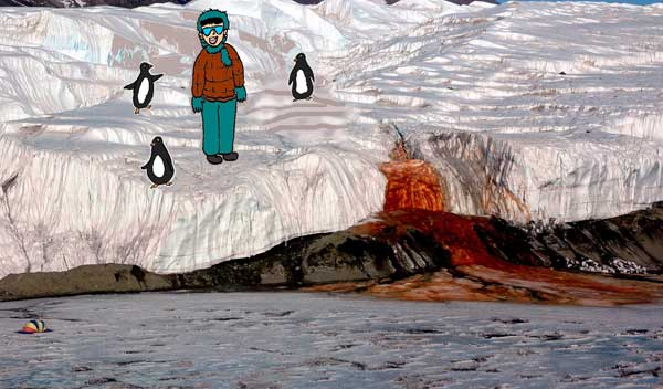Tourist standing among penguins at the Blood Falls in Antarctica