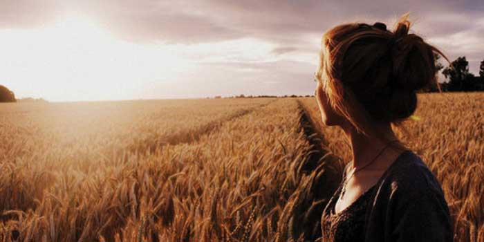 Girl in a cornfield looking at the sunset