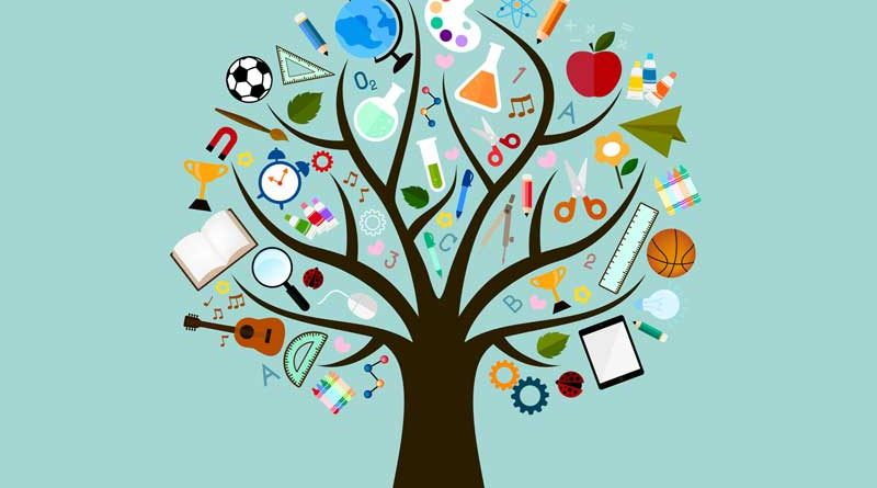 Vector study icons on the branches of a tree