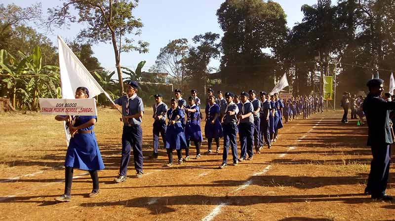 Scouts and girl guides marching