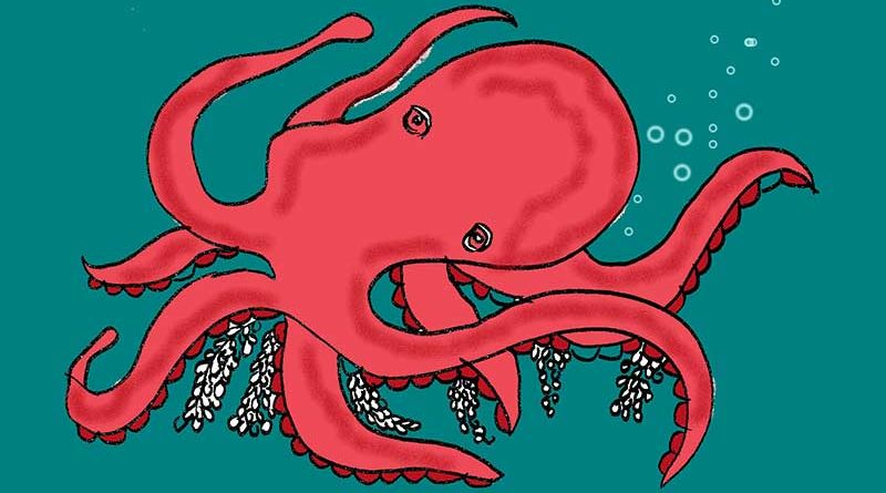 Illustration of a Giant Pacific Octopus