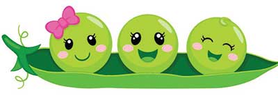 Illustration of peas in a pod