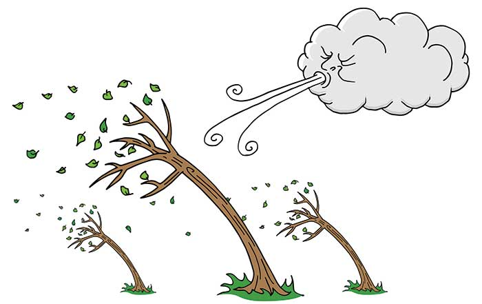 Illustration of trees bending in the wind
