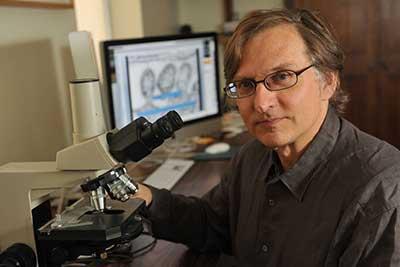 Dr W. Ian Lipkin