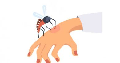Illustration of mosquito biting human hand