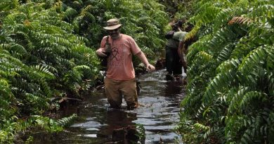 Indian Forest Service Officer wading through water in a forest