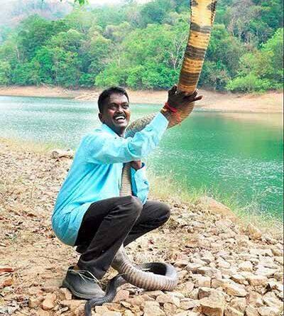 Vava Suresh, the Snake Man of Kerala