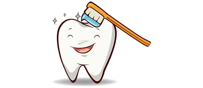 Illustration of a happy tooth being brushed with a toothbrush