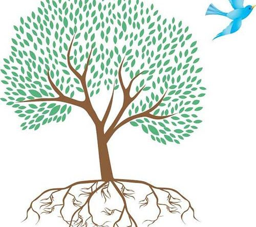 Illustration of a tree with roots and a bird circling overhead