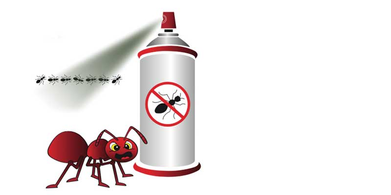 Illustration of red ant and black ants being sprayed